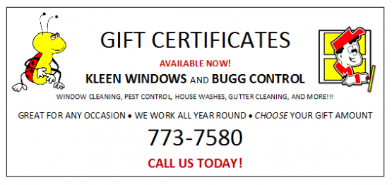 gift certificate for Kleen windows company